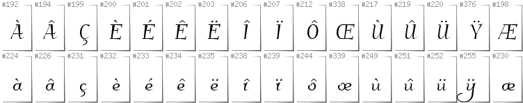 French - Additional glyphs in font Kleymissky